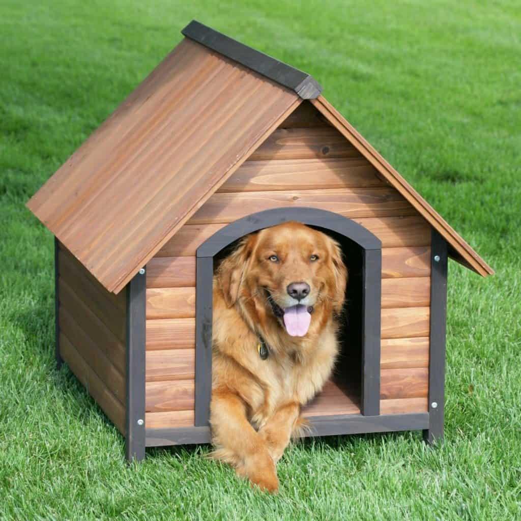 Hondenhok maken bouwtekening