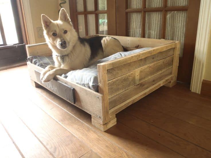 hondenmand maken steigerhout bouwtekening