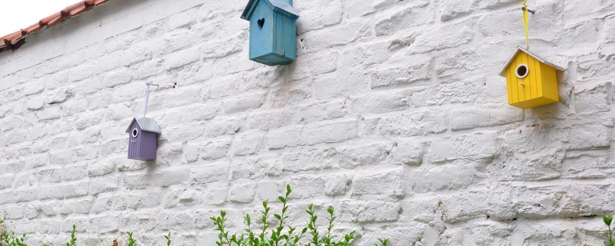 vogelhuisje maken van hout
