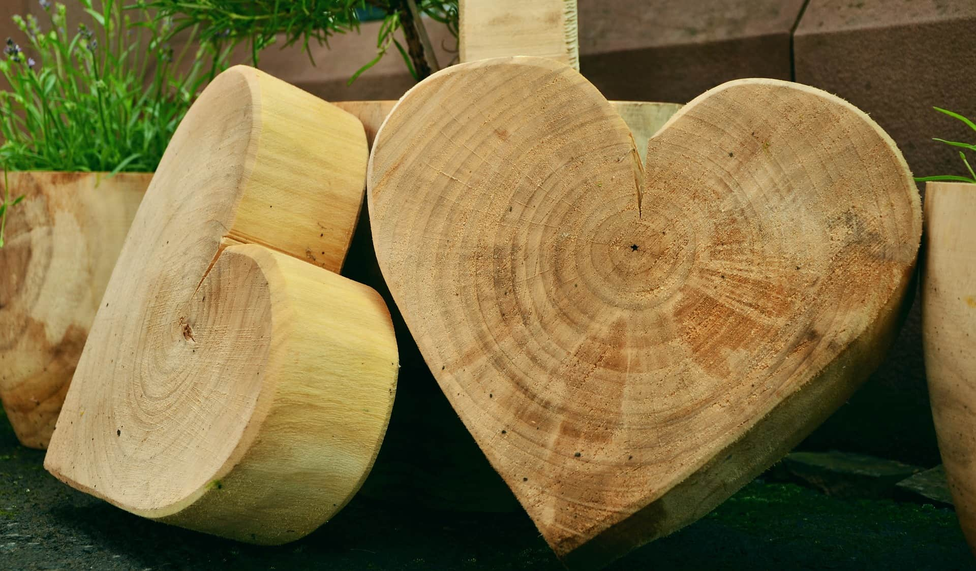 houtbouw voor beginners