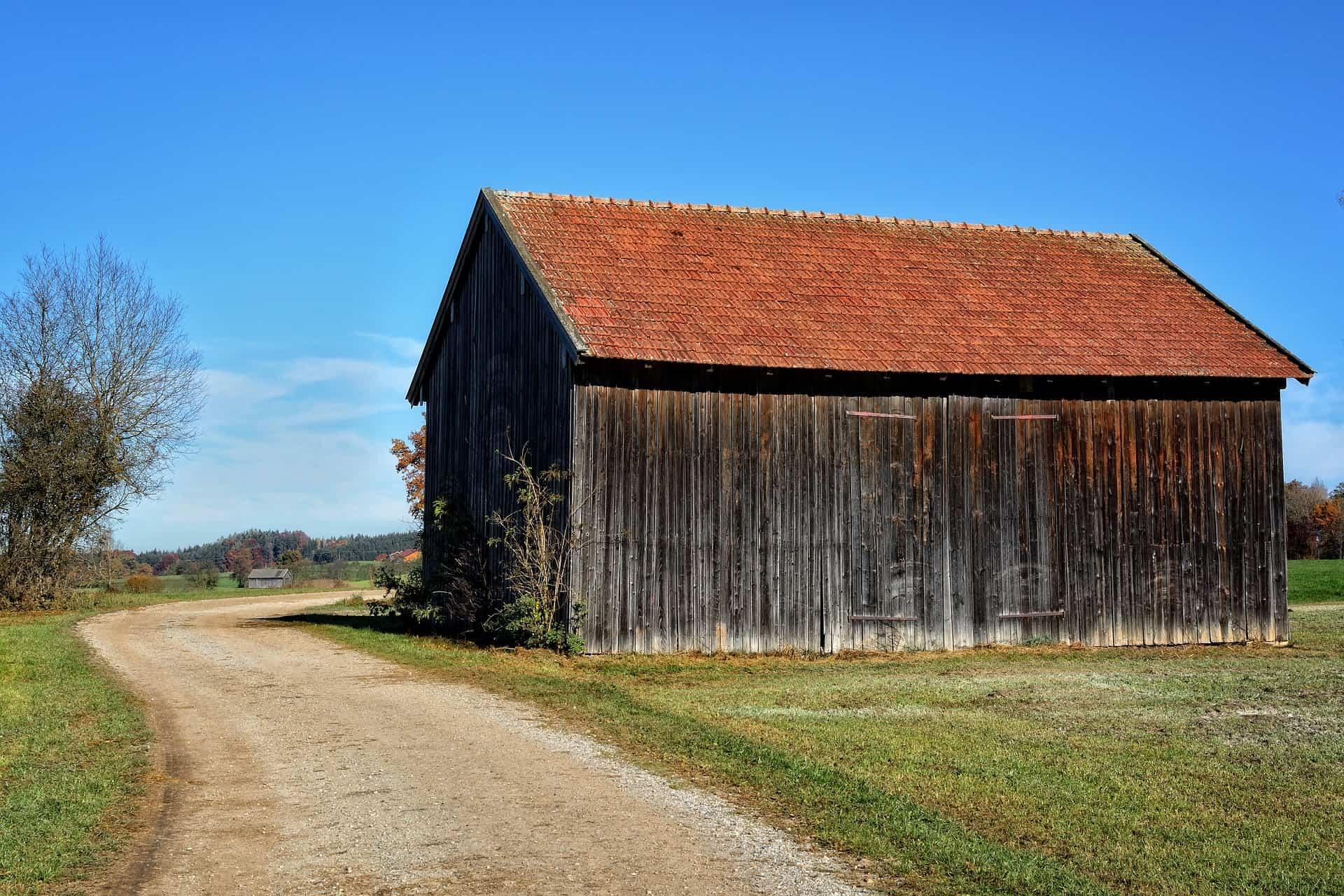 steigerhoutbeits kopen of niet